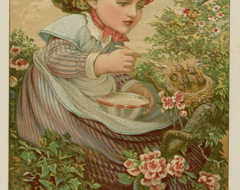 "Antique Print Little Girl Feeding Baby Birds in Nest C. 1885 Vintage Decor Matted 11x14"""