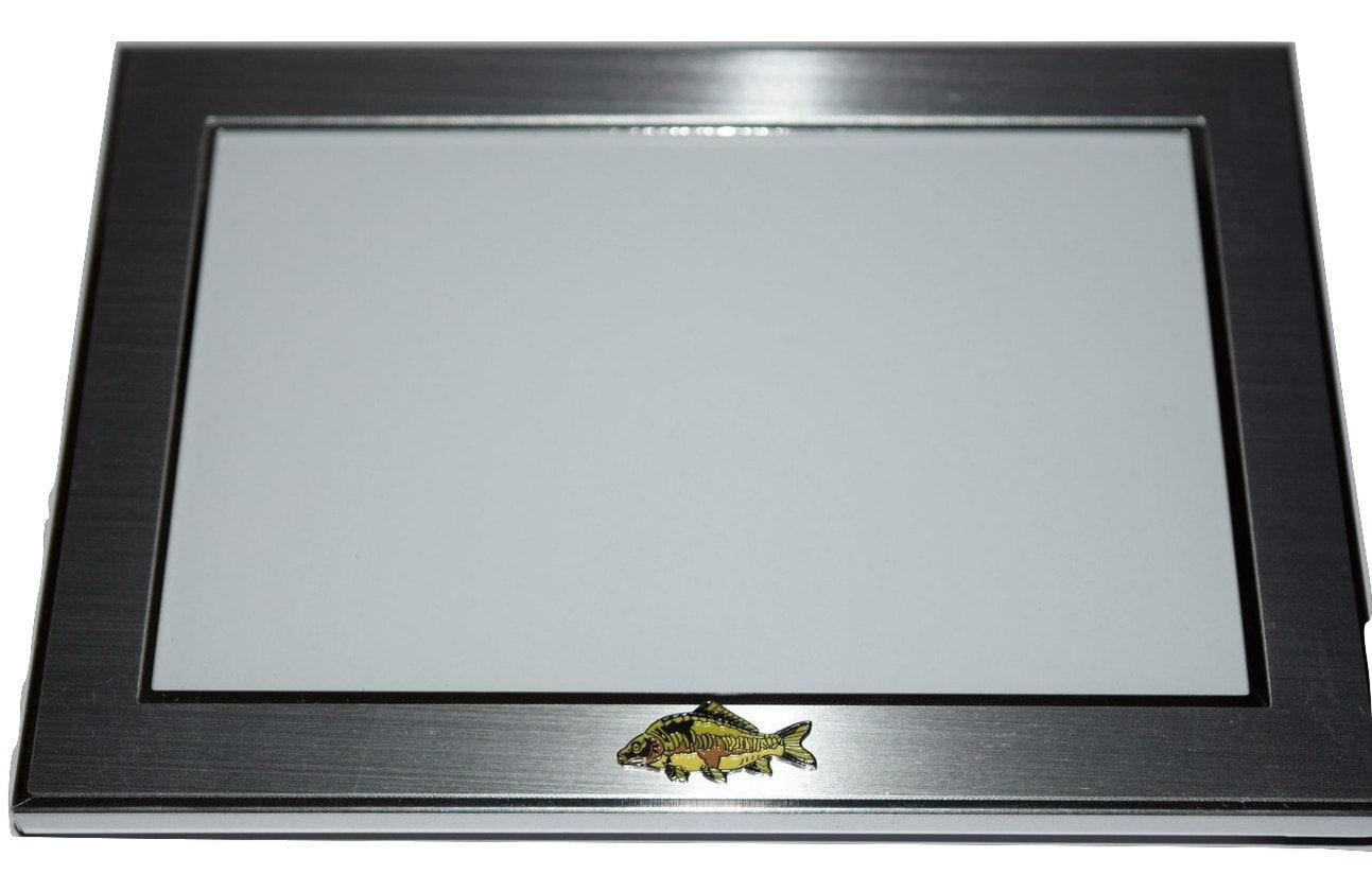 Mirror carp fish picture frame brushed chrome with carp fish 1917 jeuxipadfo Choice Image