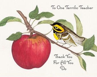 Thank You Card Warbler~Custom Thank You Card Teacher~Little Bird Card for Teacher~My Teacher Rocks~Unique Thank You Card~Handmade Bird Card