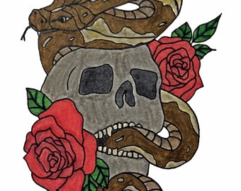 Snake and Skull Drawing