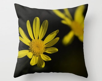 Yellow Daisies Photo Pillow, Floral Nature Photograph Home Decor Pillow Cover 18x18, Floral Fireworks 1