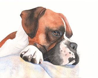 Boxer Dog Watercolor Painting - print of watercolor painting 5 by 7 size