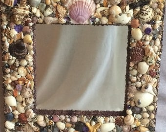 Sheashell Mirror with purple accents