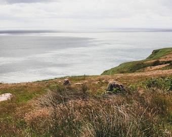Wild Earth of Scotland