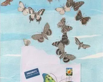 In The Clear, Paper Collage with Butterflies, Airmail Envelope, Postage Stamp, 20x16 inches, Matted