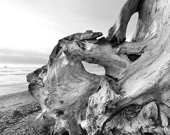 PACIFIC NORTHWEST LANDSCAPE Photo Print (Paper, Canvas, Framed, Metal, Acrylic or Wood Print) Large Wall Decor Fine Art Photography