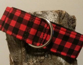The Squirrel Hunter - red plaid martingale collar
