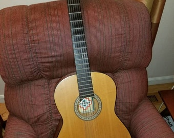 Durango acoustic guitar