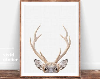 Deer Print, Woodland Nursery Prints, Nursery Wall Art, Nursery Decor, Nursery Art, Nursery Animal Prints, Prints Wall Art, Printable Art