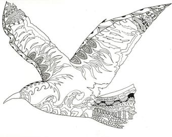 Seagull Adult Coloring Page