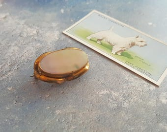 Victorian Pinchbeck & Mother Of Pearl brooch - pinchbeck brooch, victorian brooch, victorian jewelry, victorian jewellery, victorian pin