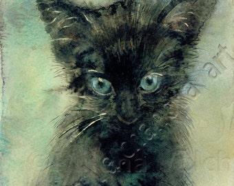 Black kitten-Art print of my original watercolor CAT ART PRINT  watercolor cat painting, cat print , cat decor, cat lover gift, cat portrait