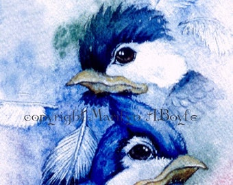 LIMITED EDITION ACEO Card;free shipping, run of only 15. artists trading card, collector's item, baby birds, feathers,