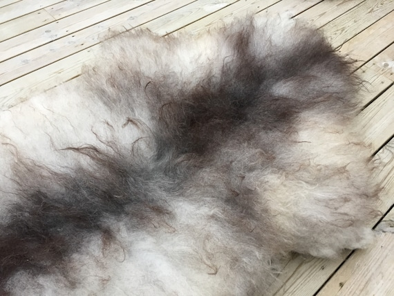 Large and lush sheepskin rug soft, volumous throw sheep skin long haired Norwegian pelt natural grey 18052
