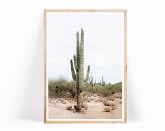 Desert Wall Art, Desert Photography, Cactus Wall Art, South Western Wall Art, Desert Digital Download, Cactus Art Print, Modern Cactus Print