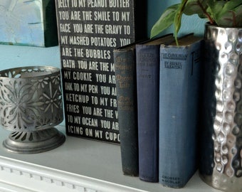 Set of 3 blue leather bound books