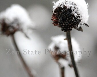 Snow Fall Print. Nature Print. Snowflake Photo. Macro Photography Print. Winter Wall Art. Photo Print, Framed Photo, or Canvas Print.