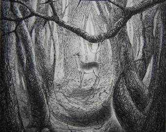 Deer-drop, etching by Flora McLachlan, woodland, trees, branch, raindrop, dewdrop, water, doe, woods, forest