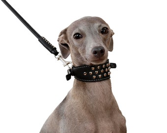 Italian Greyhound Collar Leather Dog Leash Set Puppy Soft Leather Studded Brown
