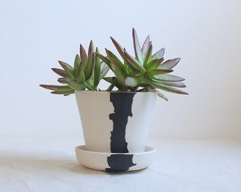 Crater Planter Mini Planter with Attached Saucer All in One Planter Ready to Ship