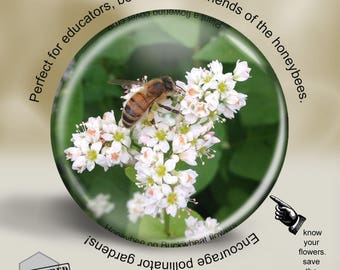 Save the Bees Pin, Magnet or Pocket Mirror, 2.25 Inch, Great for bee keepers and environmentalists