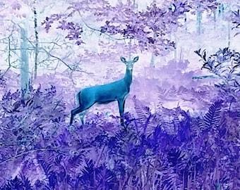 Deer Photograph, Digital Download, Deer Printable, Deer Art