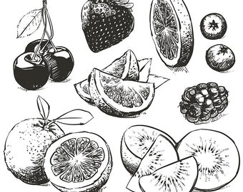80% Off Sale Hand drawn collection of fruits sketch outline. Hand drawn fruit vector. Orange, berries, lime with clipping path. (EPS, JPG)