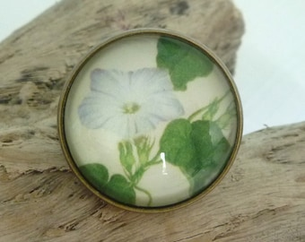 Morning Glory Ring (Antique Bronze) Glass Dome Cabochon, Flowers, Australian Made Jewellery / Jewelry