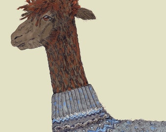 1 x greeting card, Alpaca in a sweater, funny, quirky
