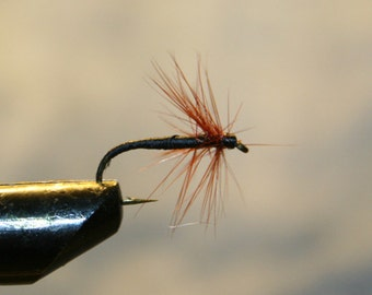 Fly Fishing - Made in Michigan - Fly Fishing Flies - Spider on Number 10 Hook - Black thread hard body with brown hackle - For Him - For Her