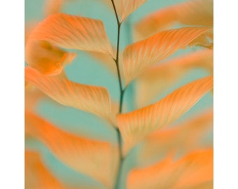 Maidenhair Fern Abstract Art, Fern Print, Neon Orange Aqua Wall Decor, Modern Art, Nature Photography, Fern Botanical Print
