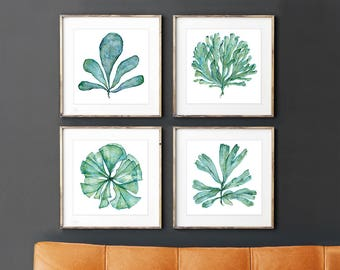 Square Print Set of 4 Pictures of Sea Fan Coral Matching Paintings, Botanical Watercolor Artwork, Bathroom Wall Art