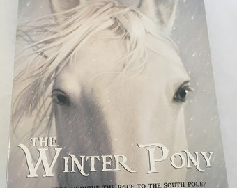 The Winter Pony Book