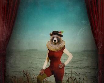 Bear Print Bear Art Animal Photography Victorian Art for the Nursery Home Decor Theater Grizzly Bear Print - The Wondrous Final Act
