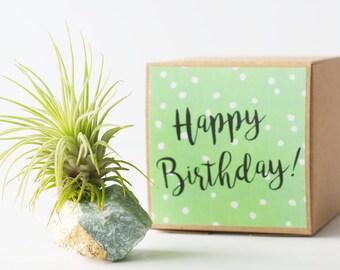 Green Aventurine Good Luck Gift, Happy Birthday Gift, Crystal Air Planter, Unique Birthday Gift, Sister Birthday, Girlfriend Birthday