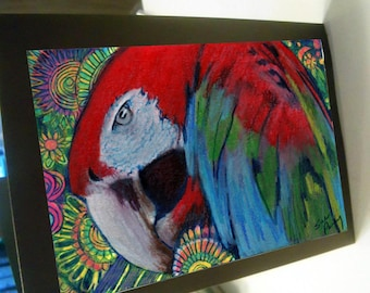 greeting card zentangle scarlet macaw blank card