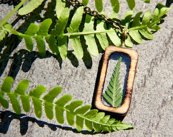 Real Organic Pressed Baby Fern in Natural Stained Wood Singed Bezel Natural OOAK Pendant Bronze Chain Wood Forest