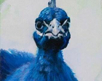 Indian Peafowl - Giclée Print of original Acrylic Painting by Spring Hofeldt