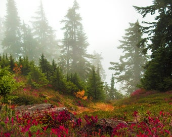Foggy Fall Morning in the North Cascades, Washington |  Pacific Northwest Photography | Print | Metal, Canvas, or Lustre