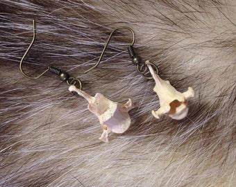 Mink vertebrae earrings