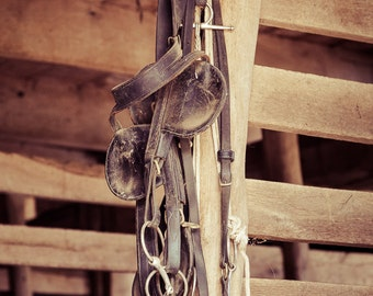Horse Tack in Stables Print - Equestrian gifts - horseback riding - country, rustic look - vintage, black and white, sepia