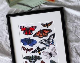 Butterflies illustration art print   Art print featuring butterflies   Butterfly drawing   Butterfly in watercolor   Butterfly artwork