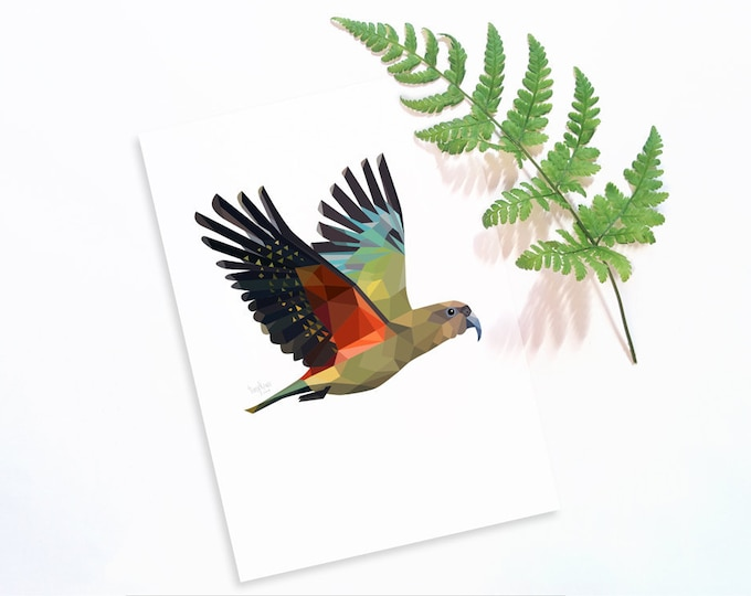 Kea print, New Zealand bird, Kea art, Mountain parrot, Geometric kea, Kiwiana art, Kiwi style, New Zealand interior, New Zealand home art