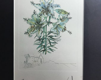 Salvador Dalí Lithograph-signed-artist's Test
