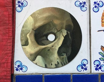 Skull Number II - Oil Painting