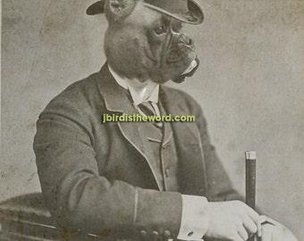 Boxer, Boxer Dog, Boxer Art, 5x7, Boxer Print, Boxer Wall Art, Boxers, Dog, Dog Art, Dog Print, Boxer Gift, Dog Artwork, Dogs, Dog Gift