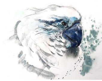 Watercolor Archival Print - White Parrot Blue Beak
