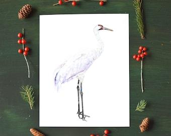 Whooping Crane Fine Art Watercolor Print