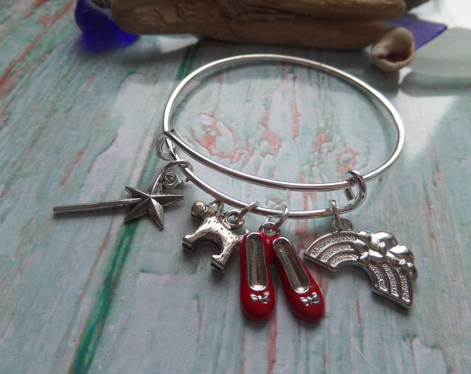 WIZARD OF OZ inspired rainbow red shoes wand & toto expandable silver charm bangle fan gift jewellery Uk