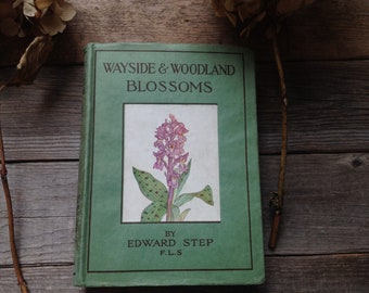 1940s Wildflowers Vintage book - Watercolour Artist - Painting book - Flower Book -Creative gift - Vintage Gift